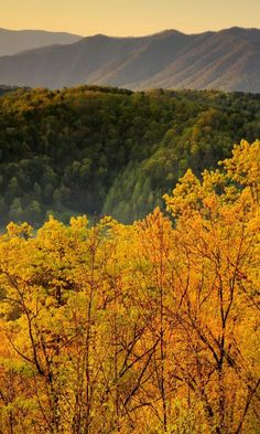 Fall is one of the best times to visit the beautiful Smoky Mountains.