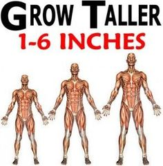 Learn How To Grow Taller 3 - 4 Inches Within 8 Weeks! Already Proven Method To Increase Height Fast & Safe. https://www.youtube.com/watch?v=eL6cM4Z8CX0