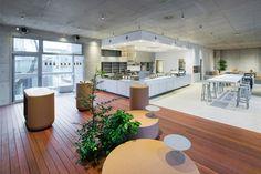 Gallery - Blue Bottle Coffee AOYAMA Cafe / Schemata Architects - 3