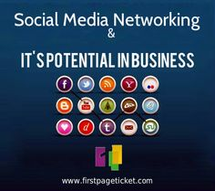 Social media networking and its potential in business