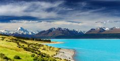 11 Unique Experiences You Need To Have In New Zealand (1)