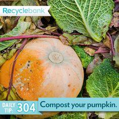 Compost your pumpkin.
