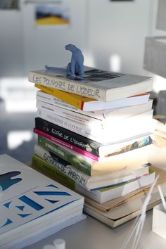 "A tall stack of books on Mathilde Laurent's desk all interestingly bear the same title, ""The Power of Smell,"" albeit by different writers and publishers. Photo by Mohéli Rinaldi for Yatzer."