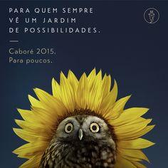 Feliz Primavera! <3 #Cabore2015