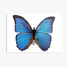 Promote   Redbubble Moth, Insects, Promotion, Faces, Studio, Animals, Animales, Animaux, The Face