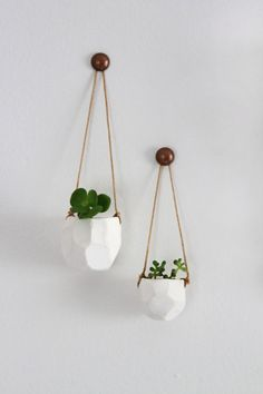 Miniature Polyhedron Planters // Indoor Succulent Garden // Single Planter - Plants Included.