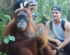 "Bukit Lawang, Sumatra @sverrin - ""Such an great conversation!"" #Backpackerstory #backpacker #travel #asia #monkey"