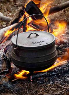 Traditional Lamb and Potato Potjie