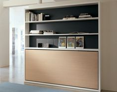 This Clei Poppi Book Wall Bed System cleverly conceals a comfy bed while offering full-time storage space.
