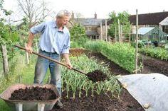 No dig growing | www.charlesdowding.co.uk