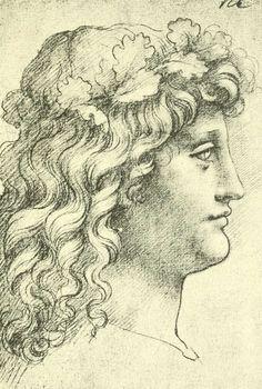 dessins Léonard de Vinci - Dessins Leonard de Vinci - tete de jeune homme de…