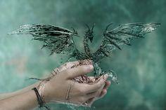 Angel Dragon | Water Dragon by martinradon