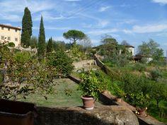 old garden view