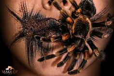 SPIDER - MAKE-UPNATURAL Pink Lady, Black Power, Close Up, Spider, Insects, Asian Woman, Spiders