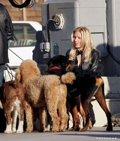 Pin for Later: Scarlett Johansson's Sweetest and Sexiest Moments! Scarlett palled around with some pups while on the set of The Island in Scarlett And Jo, Black Widow Scarlett, Avengers Girl, Avengers Cast, Scarlett Johansson The Island, Scarlett Johansson Hairstyle, Emily Ratajkowski Outfits, Black Dress Red Carpet, Best Avenger