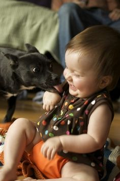 #baby and #pet by spirto