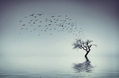 Art by Bess Hamiti Fine Art Photo, Location History, Scenery, Explore, Landscape, Twitter, Nature, Outdoor, Wallpaper