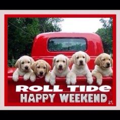 RTR...red truck loaded with puppies