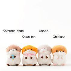 picture of Kawauso no Kotsume-chan Plushies 1