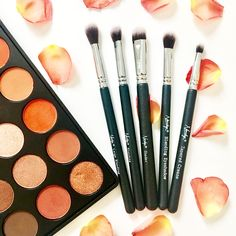 Whether you're looking to apply, blend or shade eyeshadow this Eye Brush Set is perfect for you. Selection of eyeshadow brushes. Eye Makeup Brushes, Eyeshadows, Brush Set, Peach, Make Up, How To Apply, Beauty, Eye Shadows, Eyeshadow