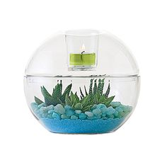 Clearly Creative™ Globe Votive Holder - Now £16.95!