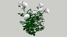 Rose bush - 3D Warehouse