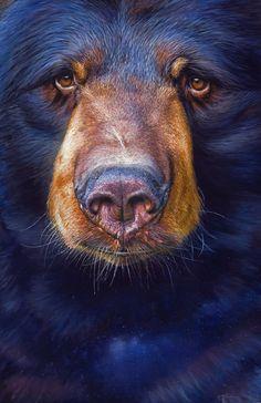 Michael Bedoian - Saluda, NC - Perfect for a mountain fireplace art feature Bear Paintings, Wildlife Paintings, Wildlife Art, North American Animals, Fireplace Art, Bear Art, Painting Process, Animal Heads, Acrylic Art