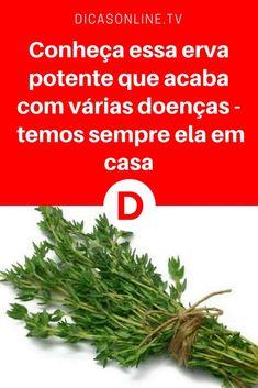 Tomilho beneficios | Conheça essa erva potente que acaba com várias doenças - temos sempre ela em casa | A erva mais potente que destrói os parasitas, as infecções do trato urinário e da bexiga, herpes, vírus da gripe, dores nas articulações, artrite, ciática, cândida e muito mais.
