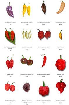 Hot Pepper Seeds: https://www.sandiaseed.com/collections/hottest-pepper-seeds