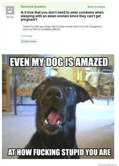 28 examples of some of the stupid people using the internet. Funny Yahoo Answers pictures to make you feel a lot smarter than the average Joe. Dumb Questions, This Or That Questions, Funny Cute, Hilarious, Funny Pick, Crazy Funny, Dear Mom, Stupid People, Just For Laughs