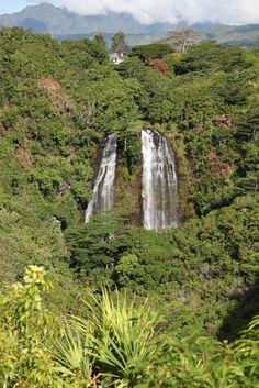 kauai | linewithline
