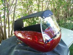 Dog Carriers For Motorcycles: OPTION REMOVABLE SUN CURTAIN