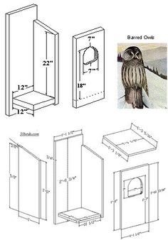 Bird House Plans 398639004516940726 - Barred Owl nestbox Source by QuilKingStudio Bat House Plans, Bird House Plans Free, Bird House Kits, Owl House, Bird Feeder Plans, Bird House Feeder, Bird Feeders, Owl Nest Box, Owl Box