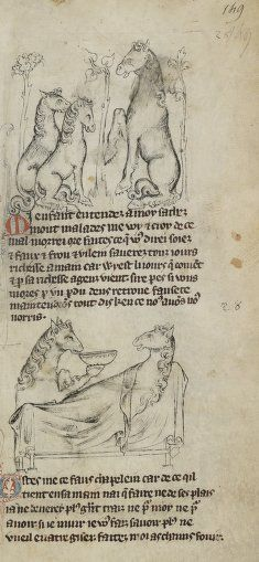 Medieval horses acting like people