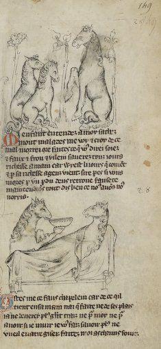 Medieval horses acting like people