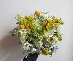 Hand tied bridal bouquet, posy, australian native fresh flowers. White waratah, yellow kangaroo paw, wax flower, grevillea, blue gum and flannel flowers. True blue aussie bouquet.
