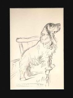 Cocker Spaniel Dog Print 1936 by Lucy Dawson Matted Sketch Animal Sketches, Animal Drawings, Art Drawings, Dog Sketches, Cocker Spaniel Dog, English Cocker Spaniel, Art Folder, Dog Blanket, Dog Pictures