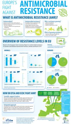 AMR 2011 data - Infographic: Europe's fight against antimicrobial resistance - The third joint EFSA and ECDC report on antimicrobial resistance in zoonotic bacteria affecting humans, animals and foods shows the continued presence of resistance to a range of antimicrobials in Salmonella and Campylobacter, the main bacteria causing food-borne infections in the European Union. Nevertheless, co-resistance (combined resistance) to two critically important antimicrobials, remains low.