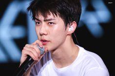 i am handsome -sehun Chanyeol, Kyungsoo, Sehun Cute, Lord, Exo Ot12, Exo Members, The Godfather, K Idols, Fangirl