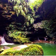 Jungle Paradise - Tena, Ecuador. Picture: Helen Davidson