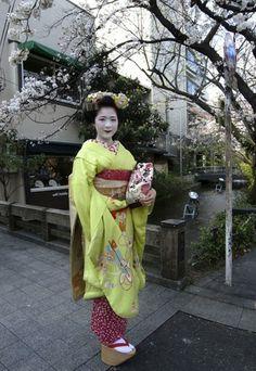 舞妓さんに出会えました|おじゃかんばん『フォトブラ☆散歩物語』