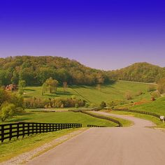 The beautiful, folling hills of Tennessee >>> Gorgeous