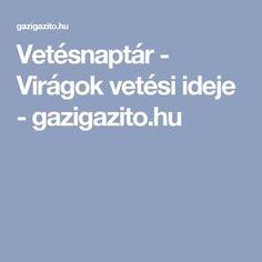 Vetésnaptár - Virágok vetési ideje - gazigazito.hu