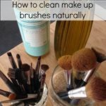 Organizing Made Fun: Spring Cleaning :: Cleaning Make-up Brushes