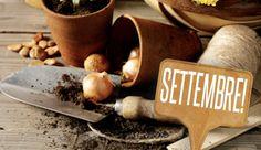 Anche a settembre potrete dedicarvi al vostro orto sul balcone e al vostro giardino privato: fiori e piante non si faranno spaventare dalle temperature in calo e continueranno a regalarvi grandi soddisfazioni!