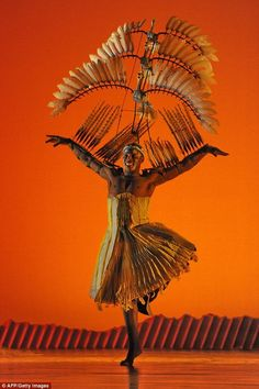 Lion King On Broadway - Bird Costume