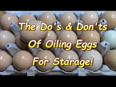 Oil eggs with mineral oil, then store in the fridge for up to 9 months. Egg Storage, Canned Food Storage, Survival Food, Survival Prepping, Preserving Eggs, Storing Eggs, Health Benefits Of Eggs, Long Term Food Storage, Emergency Preparation