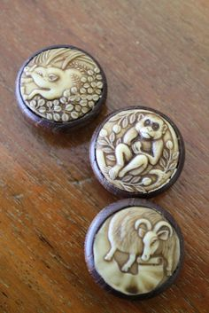 Rare Antique Celluloid and Wood Button