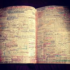 :) my goal for my Bible