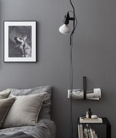 Grey gris
